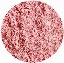 YOUNGBLOOD Crushed Mineral Blush 3g - sypki róż do twarzy / tulip MEGA HIT